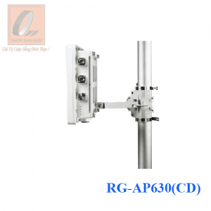 RG-AP630(CD)