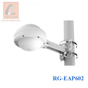 RG-EAP602